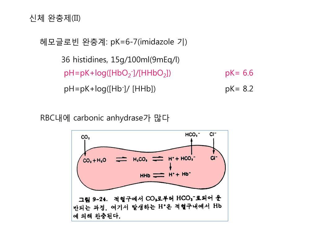 신체 완충제(II) 헤모글로빈 완충계: pK=6-7(imidazole 기) 36 histidines, 15g/100ml(9mEq/l) pH=pK+log([HbO2-]/[HHbO2])